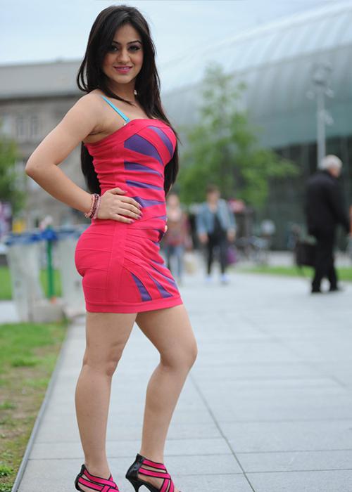 Aksha Pardasany Tamil Actress Profile