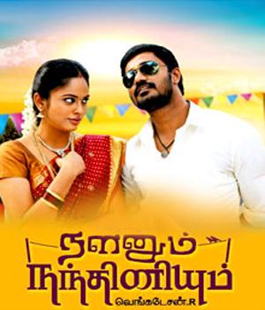 About Nalanum Nandhiniyum Movie Details