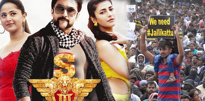 Suriya's  S3 release date postponed again - Jallikattu Protest